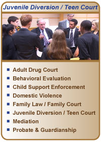 General teen court referrals